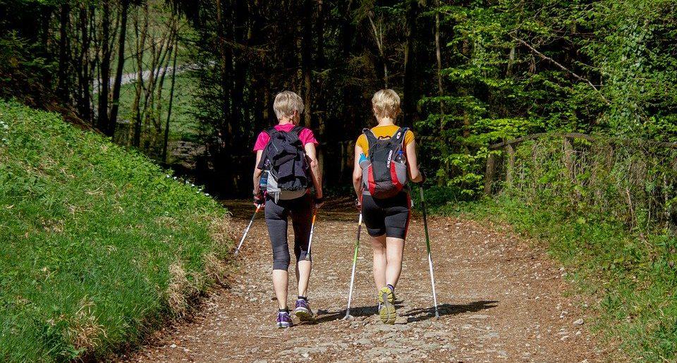 Dopasowane kijki trekkingowe ułatwieniem na trasie